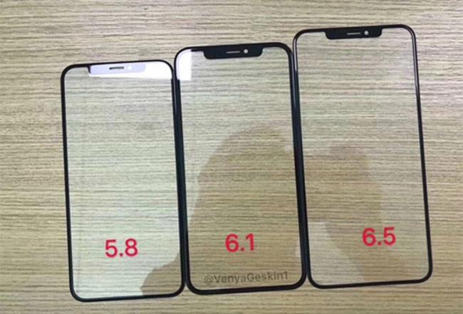 Ba kích thước màn hình của iPhone trong năm 2018. Ảnh: VenyaGeskin1.