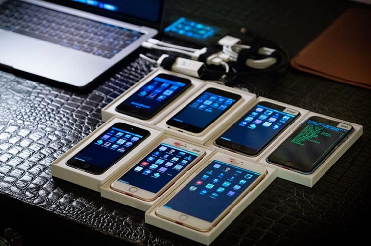 Bộ sưu tập iPhone nguyên mẫu của Zompetti. Ảnh: Motherboard.