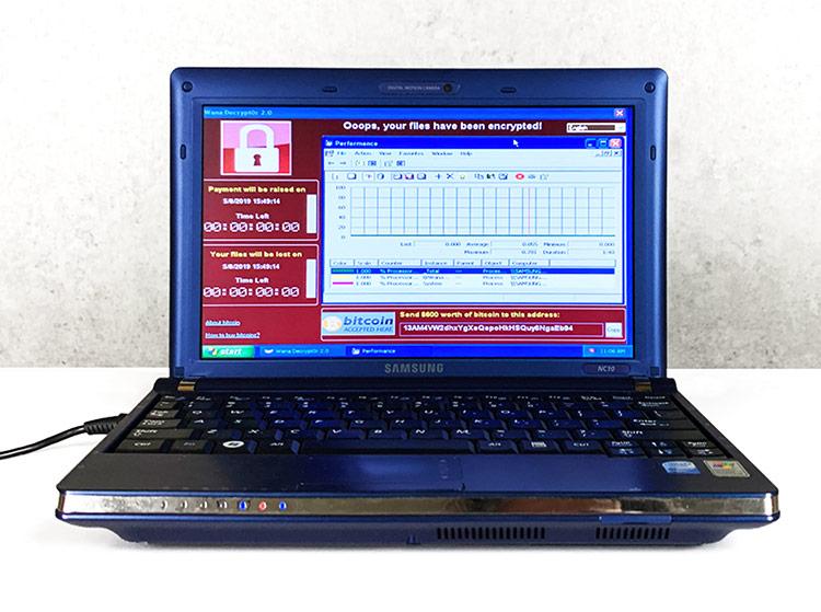 Chiếc laptop cũ kỹ chạy Windows XP đang được đấu giá hơn 1,2 triệu USD. Ảnh: Motherboard.