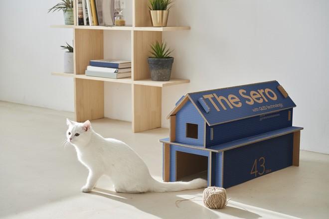 Hộp TV Samsung có thể tái sử dụng làm ổ cho mèo - Ảnh 4.