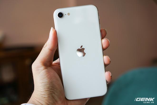 DxOMark đánh giá iPhone SE 2020 chụp ảnh xấu hơn cả Xiaomi - Ảnh 1.