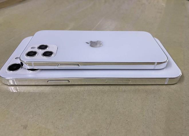 Lộ diện mô hình khá hoàn thiện của iPhone 12, 3 kích thước màn hình khác nhau, khung viền giống iPad Pro - Ảnh 1.
