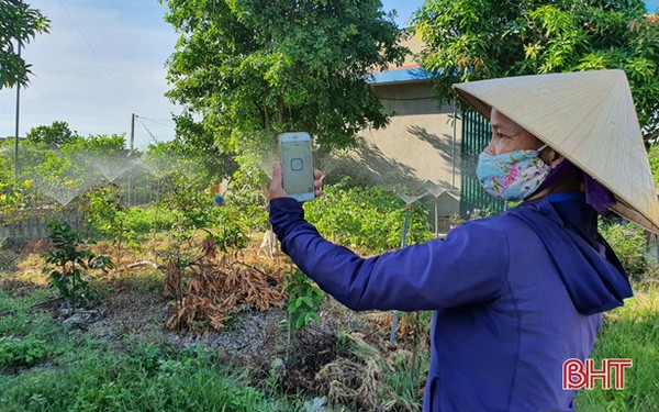 Nông dân Hà Tĩnh tưới cây... bằng smartphone! - Ảnh 1.