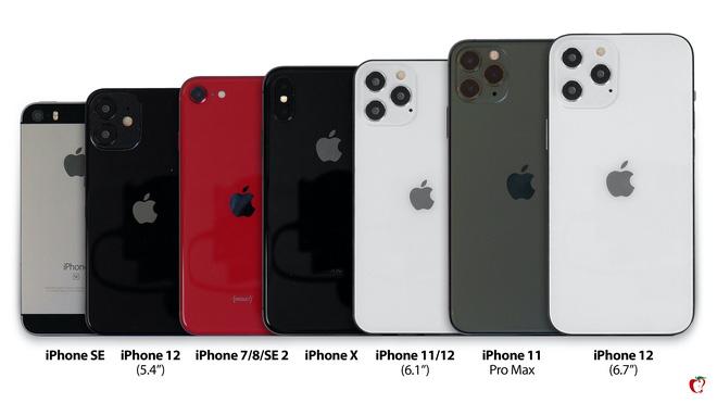 So sánh kích thước 4 mẫu iPhone 12 với iPhone đời cũ: Bản tiêu chuẩn 5.4 inch còn nhỏ hơn cả iPhone SE 2020 - Ảnh 1.